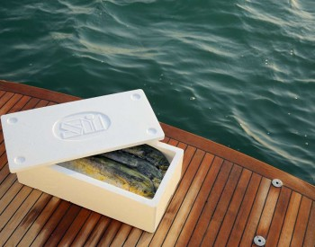 Insolie FIsh Boxes